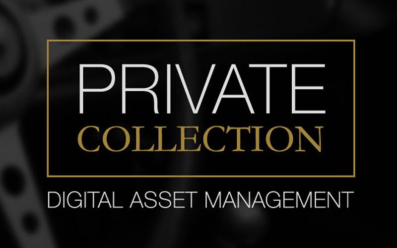 Speed Digital - Digital Solutions for Enthusiasts   Brands 97b48ff9dd5c